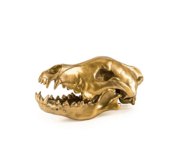 Seletti Wunderkammer – Wolf Skull